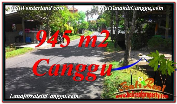 TANAH MURAH di CANGGU DIJUAL 945 m2 di Canggu Pererenan