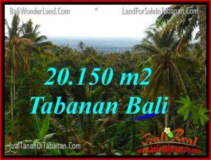 JUAL TANAH di TABANAN 201.5 Are di Tabanan Penebel