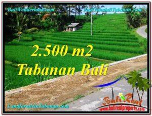 DIJUAL TANAH di TABANAN Untuk INVESTASI TJTB305