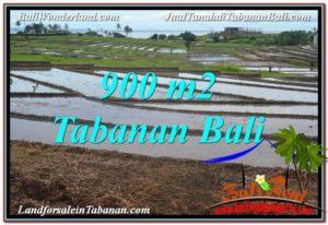JUAL TANAH di TABANAN 900 m2 di Tabanan Selemadeg