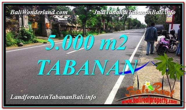 JUAL TANAH di TABANAN BALI 50 Are View Kebun