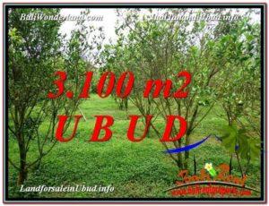 JUAL TANAH di UBUD BALI 3,100 m2  View kebun