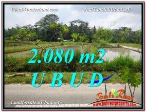 TANAH JUAL MURAH  UBUD 2,080 m2  View  Sawah