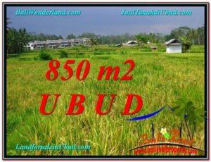TANAH MURAH JUAL   UBUD 9 Are View  Sawah link Villa