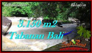 INVESTASI PROPERTI, TANAH MURAH DIJUAL di TABANAN TJTB282