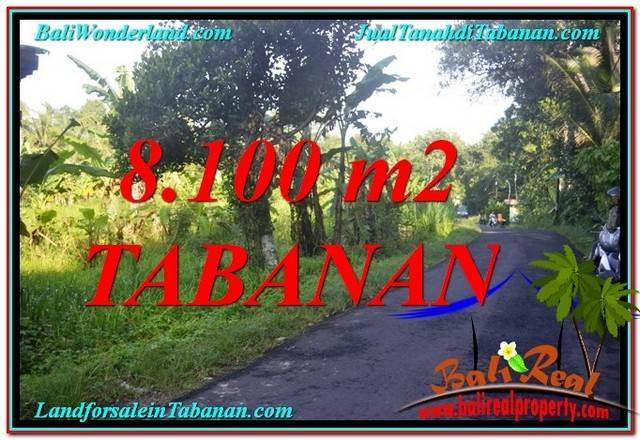 DIJUAL MURAH TANAH di TABANAN BALI 8,100 m2 di Tabanan Marga