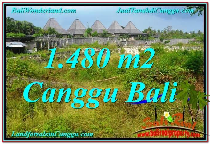 TANAH di CANGGU BALI DIJUAL 1,480 m2  View sawah lingkungan villa