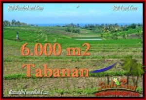 TANAH di TABANAN JUAL MURAH 6,000 m2  View Laut, Gunung dan sawah