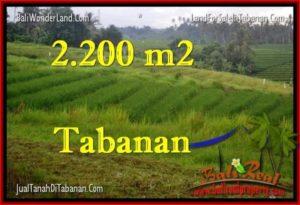 TANAH di TABANAN JUAL MURAH 2,200 m2  View Laut dan sawah