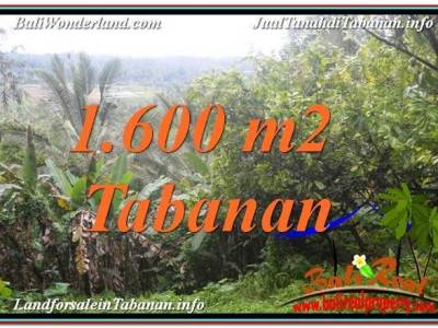 DIJUAL MURAH TANAH di TABANAN BALI TJTB348