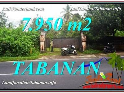 JUAL TANAH di TABANAN BALI 7,950 m2 View Kebun