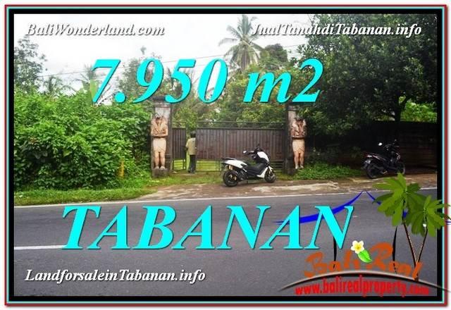 DIJUAL MURAH TANAH di TABANAN BALI 7,950 m2 di Tabanan Bedugul