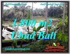 TANAH di UBUD DIJUAL 1,800 m2 di Ubud Tampak Siring