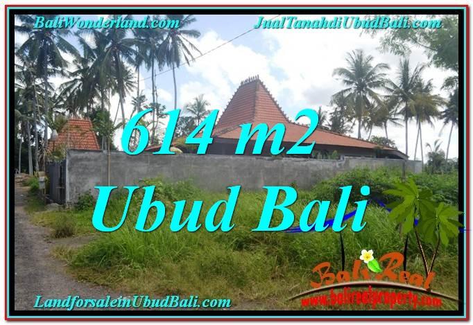 TANAH JUAL MURAH  UBUD 6 Are View kebun lingkungan Villa
