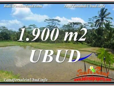 JUAL MURAH TANAH di UBUD BALI 1,900 m2 View Sawah dan Sungai