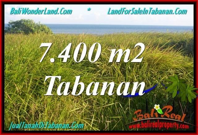 JUAL TANAH MURAH di TABANAN 7,400 m2 di Tabanan Selemadeg