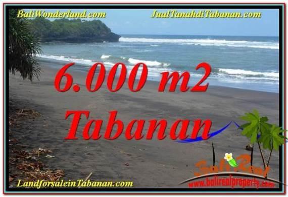 TANAH MURAH di TABANAN JUAL 6,000 m2 View laut dan sawah