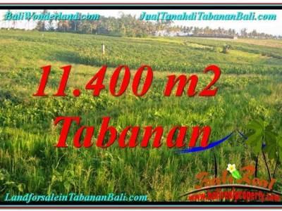 JUAL MURAH TANAH di TABANAN BALI 11,400 m2 View Laut, Gunung dan sawah