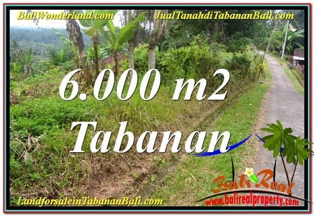 TANAH MURAH di TABANAN DIJUAL Untuk INVESTASI TJTB349