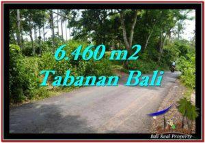 JUAL MURAH TANAH di TABANAN BALI 64.6 Are View kebun dan laut