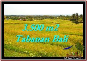 JUAL TANAH MURAH di TABANAN Untuk INVESTASI TJTB259