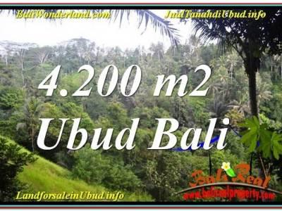 TANAH MURAH DIJUAL di UBUD BALI 4,200 m2 di Sentral / Ubud Center
