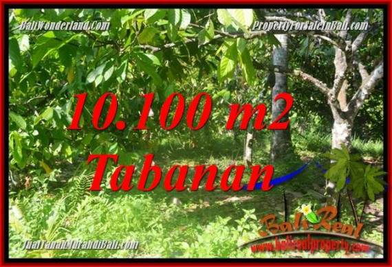 TANAH DIJUAL di TABANAN BALI 10,100 m2 di Tabanan Selemadeg Barat