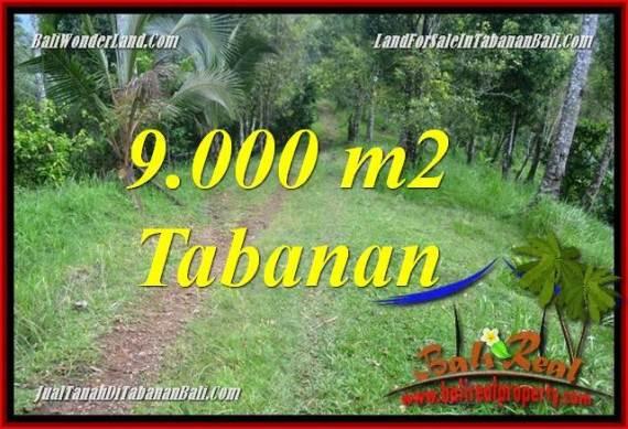 TANAH DIJUAL di TABANAN BALI 9,000 m2 View kebun