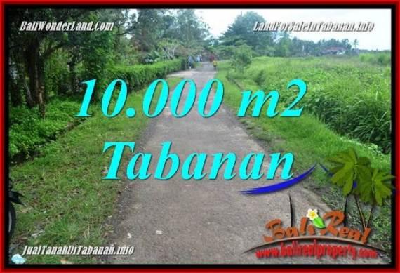 TANAH MURAH di TABANAN JUAL 100 Are View sawah
