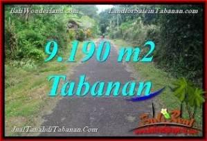 TANAH MURAH di TABANAN BALI DIJUAL 9,190 m2 View Sawah dan Sungai