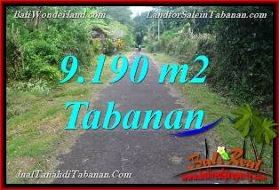 JUAL MURAH TANAH di TABANAN BALI 9,190 m2  View Sawah dan Sungai