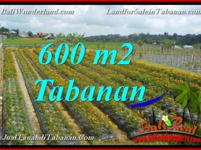 INVESTASI PROPERTY, TANAH DIJUAL MURAH di TABANAN BALI TJTB372