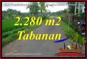 JUAL TANAH MURAH di TABANAN BALI 22.8 Are View Laut, Gunung dan sawah