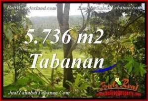 TANAH di TABANAN JUAL MURAH 5,736 m2 View Kebun dan Sungai kecil