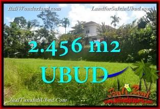 JUAL TANAH MURAH di UBUD BALI 2,456 m2 View tebing link Villa