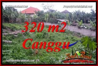 JUAL MURAH TANAH di CANGGU BALI 320 m2  LINGKUNGAN VILLA
