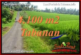 JUAL MURAH TANAH di TABANAN BALI 41 Are VIEW SAWAH, LINGKUNGAN VILLA