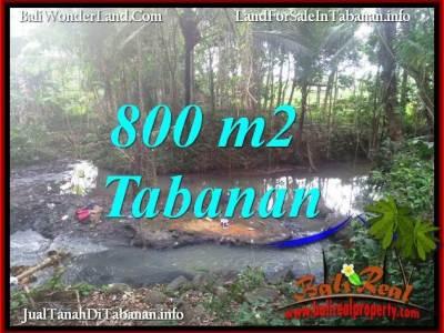 JUAL TANAH MURAH di TABANAN BALI 800 m2 di TABANAN SELEMADEG