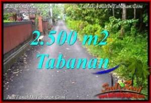TANAH MURAH  di TABANAN BALI DIJUAL 2,500 m2  VIEW KEBUN, LINGKUNGAN VILLA