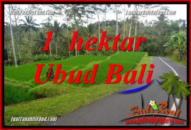 Tanah Murah di Ubud jual 10,000 m2  View Sungai dan Tebing