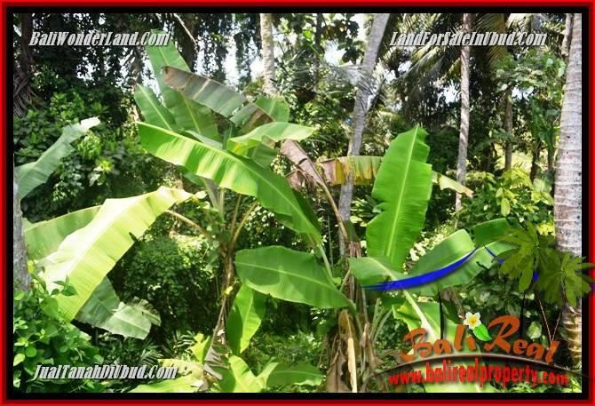 JUAL Tanah di Ubud Bali TJUB687