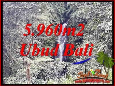 JUAL Murah Tanah di Ubud Bali 60 Are View sawah dan sungai