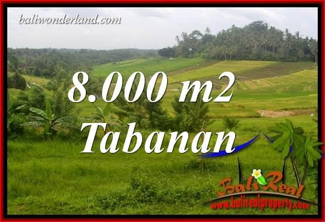 Tanah Dijual di Tabanan Bali 80 Are di Tabanan Selemadeg