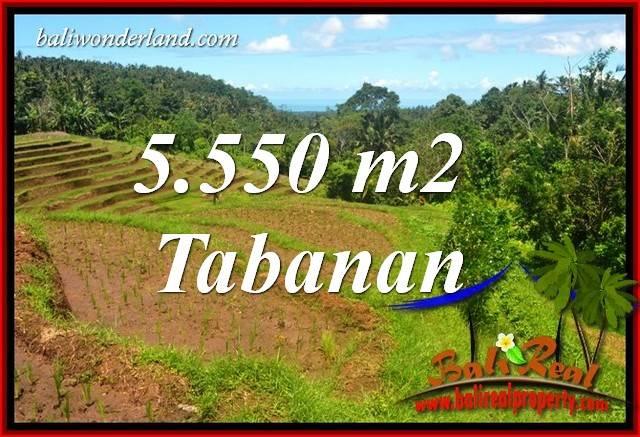 JUAL Tanah Murah di Tabanan Untuk Investasi TJTB405