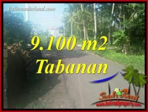 Tanah Murah jual Tabanan 91 Are View Sawah