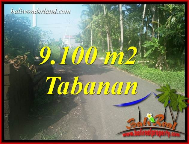 Investasi Properti, Tanah Murah Dijual di Tabanan TJTB407