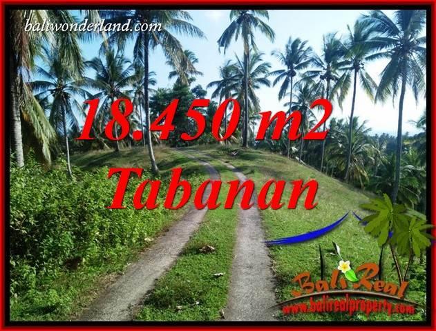 Dijual Murah Tanah di Tabanan Untuk Investasi TJTB410