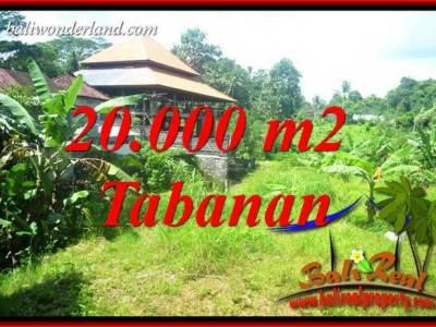 Tanah Dijual di Tabanan Bali 200 Are View Sawah dan Sungai