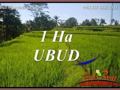 Tanah Murah di Ubud 100 Are View Sawah dan Sungai