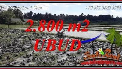 JUAL Murah Tanah di Ubud Bali 2,800 m2 View Sawah